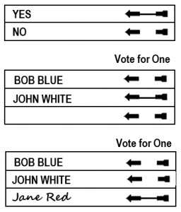 Write-in Vote